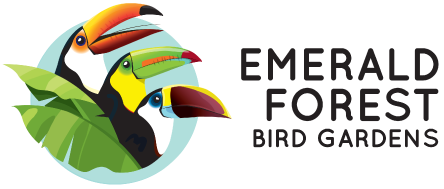 Emerald Forest Bird Gardens
