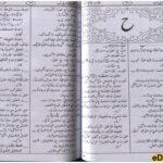 Al Qamoos ul Jadeed Arabic Urdu Lughat Dictionary page