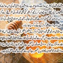 Wild Acacia Honey