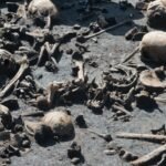 Europe's Oldest Battlefield Yields Clues to Fighters' Identities
