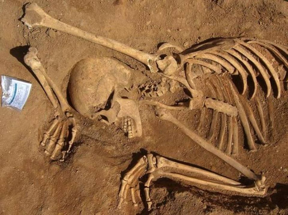 Adult female skeleton found at Valle da Gafaria, Portugal, suggests a careless burial.