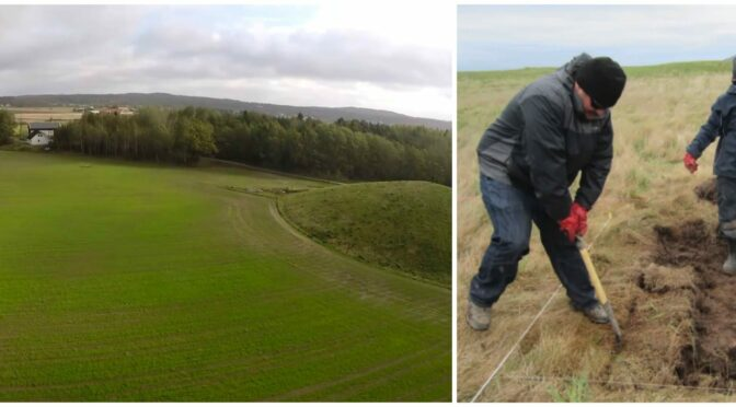 Radar Reveals an Ancient Artifacts & Treasure in Scandinavia's First Viking City