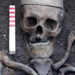 London archaeology dig: Skeletons reveal noxious environs in early industrial Britain