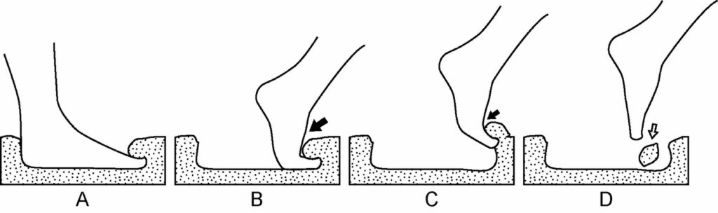 This sequence shows how the footprint may have been made.