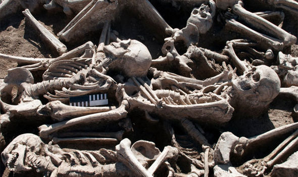 Archeologists find 60 Roman British skeletons buried in field