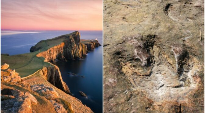 Huge Dinosaur Footprints Discovered on Scottish Coast