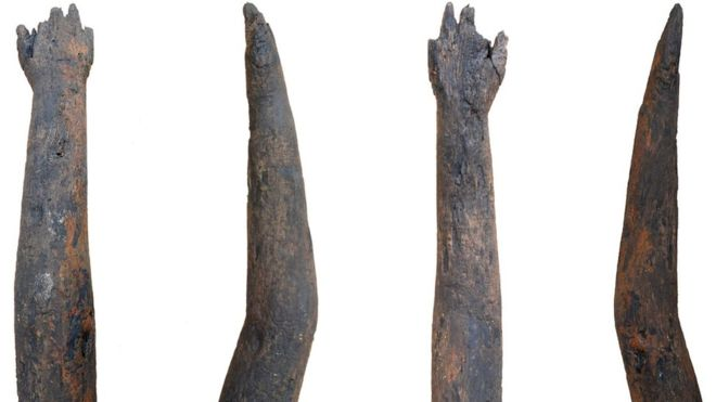 The arm is more likely to have been a ritual offering than a prosthetic limb