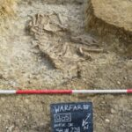 Romano-Saxon Site Found in England