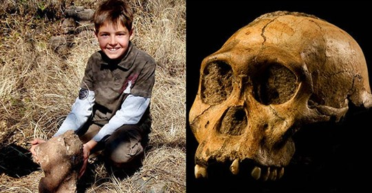 9-Year-Old Kid Literally Stumbled on Stunning Fossils of a New Hominid