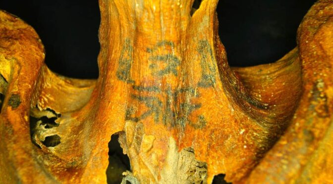 Ornately-tattooed 3,000-year-old mummy discovered by archaeologists