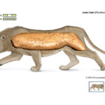 45,000-year-old Cave Lion Figurine Uncovered At Denisova Cave
