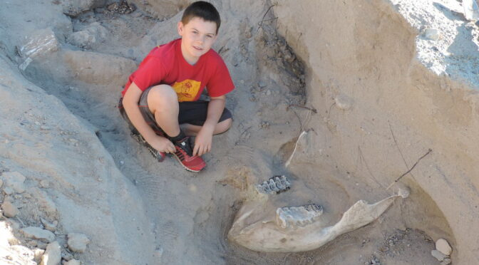 Boy Found Million-Year-Old Fossil by Tripping Over It