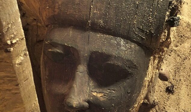 Stunning Face Hidden for Thousands of Years: Wooden Sarcophagus Is Unearthed at Egyptian Necropolis