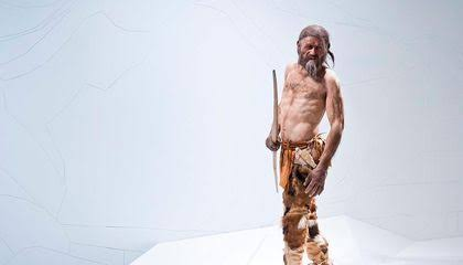 Scientists Examine Iceman's Neolithic Hunting Kit