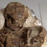 Archaeologists discover 4,800-year-old fossil of a mother cradling a baby