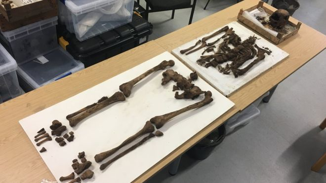 Possible 18th-Century Sailor's Skeleton Unearthed near buried porpoise in Guernsey