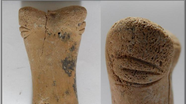 Anthropomorphic figurine discovered by a Polish researcher