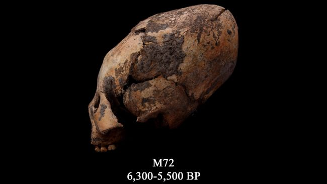 12,000-Year-Old Elongated Skulls Discovered in Asia Stun Experts