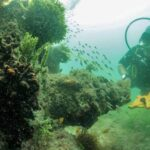 Researchers Will Search for Spanish Treasure Ship