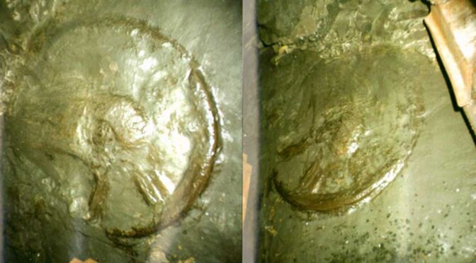 300 Million Year Old Enigmatic Ancient Wheel Found Deep In Mine?