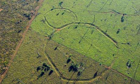 Ancient Advanced City Found Hidden in the Amazon