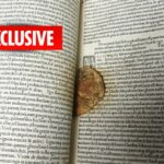 Half-Eaten Cookie Found Inside 16th Century Tudor Manuscript