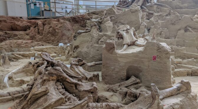 Inside the excavation of a South Dakota sinkhole that swallowed more than 60 mammoths