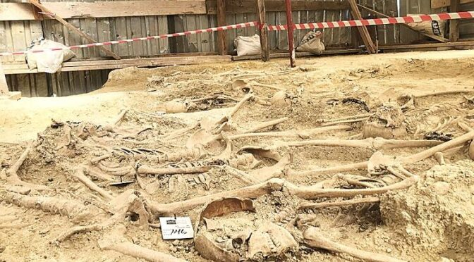 Graves of Ottoman Soldiers Unearthed Near Istanbul