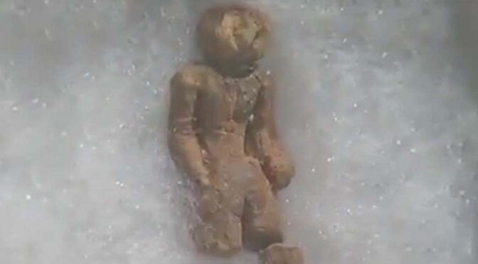 The Nampa Figurine: 2-million-year-old Relic or Just a Hoax?