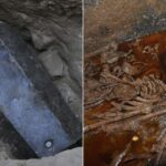 Scientists identify 'mummy juice' in Egyptian sarcophagus