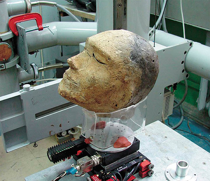 Clay head prepared for fluoroscopy at the Institute of Nuclear Physics, SB RAS.