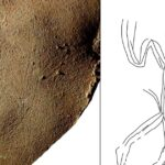 Human Figure Detected on 14,000-year-old Burial Slab in Israel