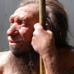 Neandertals had older mothers and younger fathers