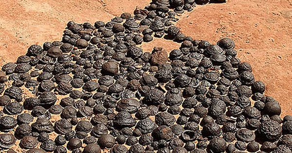 Moqui marbles naturally occurring iron oxide concretions that arise from Navajo sandstone