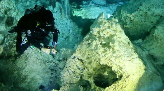 Scientists find evidence of fires built in Yucatán cave 10,000 years ago