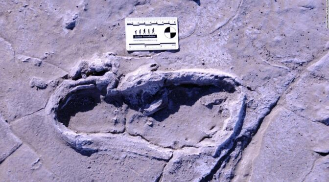 Hundreds of fossilized human footprints found in Africa could reveal ancient traditions