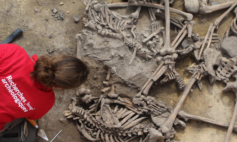 France digs up bones from 6,000-year-old 'massacre'