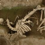 Very strange Gallo roman horse and human burials at Evreux (Eure) France.