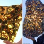 The world's most Amazing Meteorite found