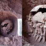 A 9,000-year-old head with amputated hands laid over could be the oldest ritual beheading in the Americas