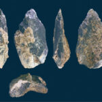 1.4-Million-Year-Old Bone Hand Ax Identified