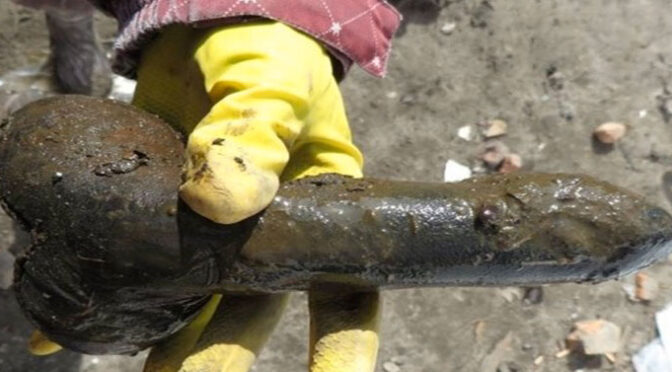 Archaeologists unearth 18th Century Sex Toy in Ancient Latrine in Poland