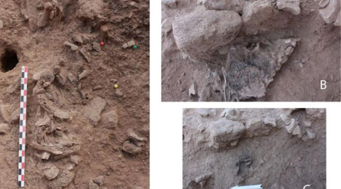 Early Neolithic Cremation Burial in Israel Examined