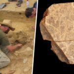 Earliest art in the British Isles discovered on Jersey