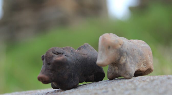 Unique 3,500-year-old Pig Figurines Discovered in Poland