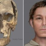 600-Year-Old Skeleton found beneath Edinburgh School Playground