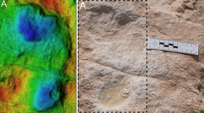 120,000-Year-Old Footprints Found in Saudi Arabia