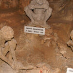The 700,000-year-old Skull in Greek cave completely shatters the Out of Africa theory