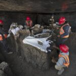 At least 200 mammoth skeletons discovered under the Mexico City airport site