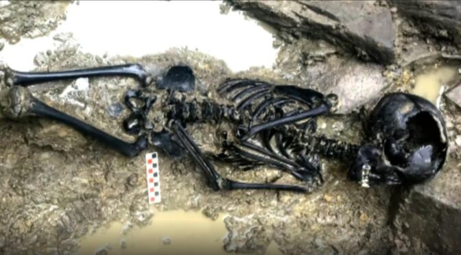 Viking-Era Child's Remains Discovered in Dublin